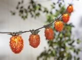 CANVAS Pineapple Outdoor String Lights | CANVAS