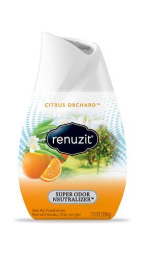 Renuzit Citrus Sunburst Solid Air Freshener