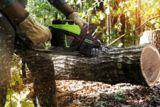 Greenworks 60V Brushless Chainsaw, 18-in | GREENWORKSnull