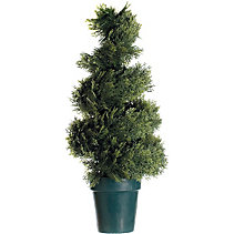 canadian tire trees and shrubs 80 cm cypres spiral in pot 11966