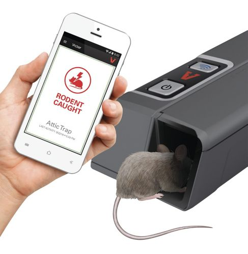 Victor Smart Kill Mouse Trap Product image