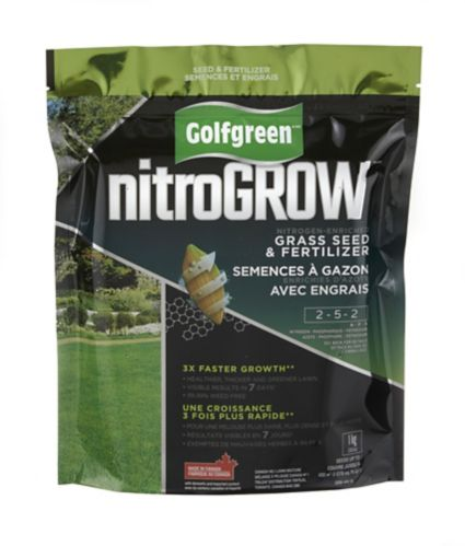 Golfgreen NitroGROW Grass Seed & Fertilizer, 1-kg Product image