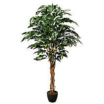 canadian tire trees and shrubs plantes artificielles canadian tire 11966