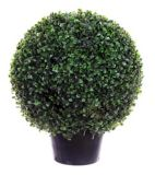 CANVAS Artificial Boxwood Ball Tree, 18.5-in | CANVASnull