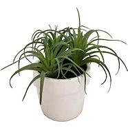 Succulente artificielle CANVAS avec pot en céramique, 6 po