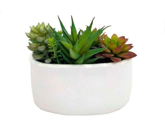 CANVAS Artificial Succulent in Ceramic Pot, 7.25-in Product image