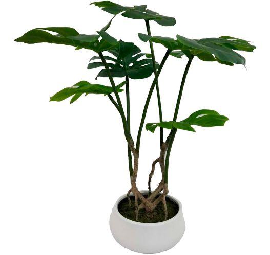 CANVAS Split Leaf Arrangement, 24-in Product image