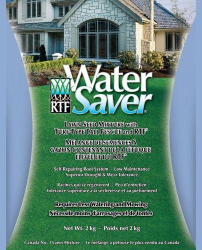 Semences de gazon  RTF Water Saver, 2 kg Image de l'article