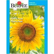 Burpee Annual Flower Seeds, Assorted