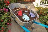 Yardworks Colour Gripper Gloves, Assorted, Medium   Yardworksnull