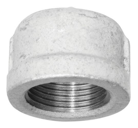 Raccord de tuyau en fer galvanisé Aqua-Dynamic, bouchon, 1 po Image de l'article