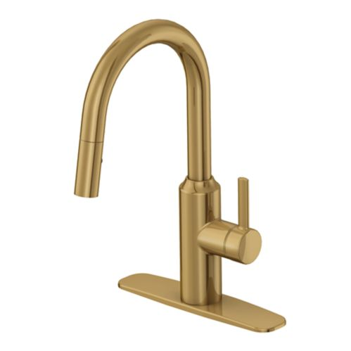 Danze Colby 1-Handle Pull Down Kitchen Faucet, Brushed Bronze Product image