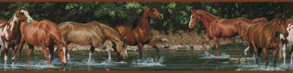 Bordure murale, chevaux,  5 po  x 15 pi Image de l'article