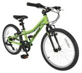 Raleigh Vibe Youth Bike, Green, 20-in | RALEIGHnull