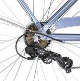 Raleigh Campus Comfort Bike, 26-in | RALEIGHnull