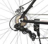 Raleigh Trailblazer XL Hardtail Mountain Bike, 29-in | RALEIGHnull
