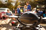 Barbecue portatif au propane Weber Q1200, noir | Webernull