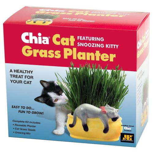 Chia Cat Grass Snoozing Kitty Planter Product image