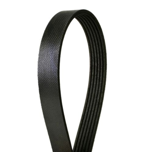 Continental Premium Belt Product image