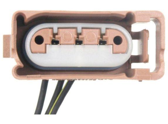 Connecteur douille de feu de plaque d'immatriculation BWD Image de l'article
