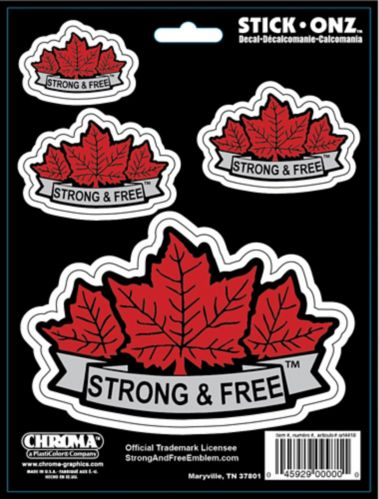 Strong and Free Decal, 6 x 8-in Product image