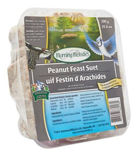 Morning Melodies Peanut Feast Bird Suet, 300-g Product image