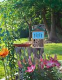 Maison pour insectes Nature's Way | Nature's Waynull