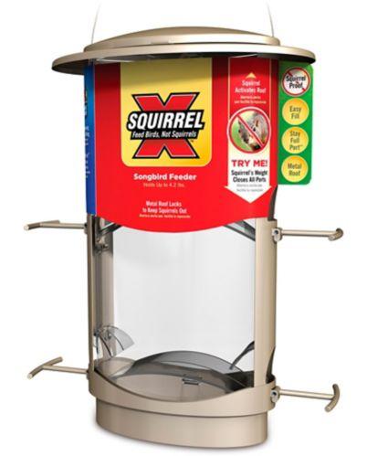 Mangeoire à l'épreuve des écureuils X1, 4 lb Image de l'article