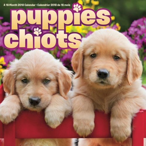 2018 Puppies Wall Calendar Product image
