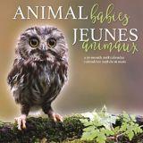 Calendrier mural 2018, bébés animaux | Dateworksnull