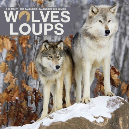 2018 16-Month Wolves Wall Calendar, Bilingual Product image