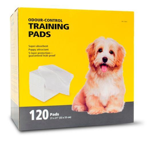 Tapis d'entraînement pour chien Image de l'article