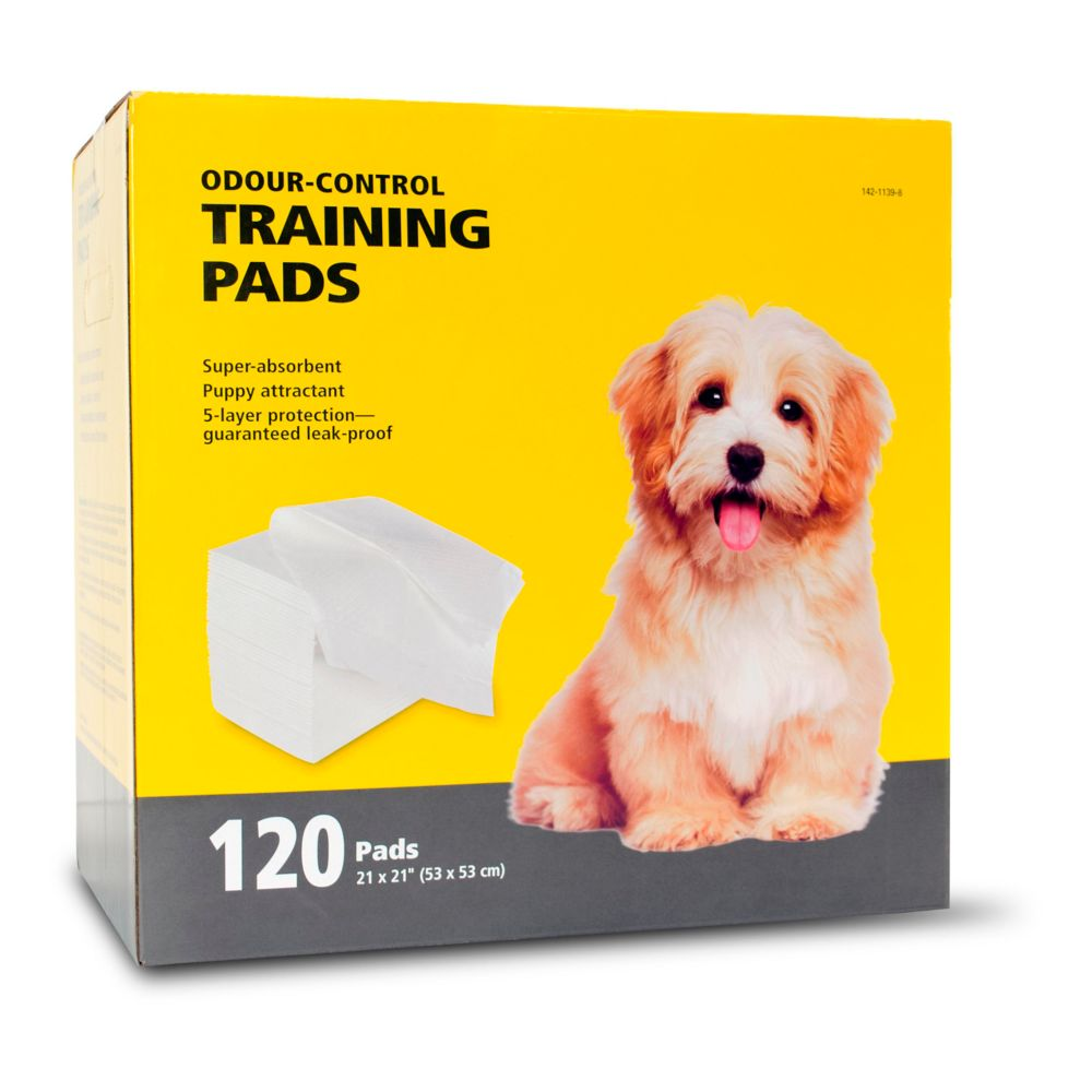 Canadian Tire Dog Training Pads
