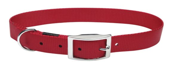 Buckle Collar, 3/8-in x 12-in Product image