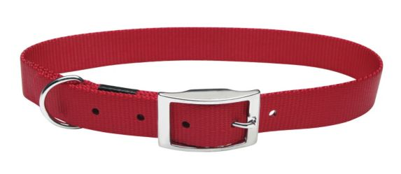 Buckle Collar, 5/8-in x 14-in Product image