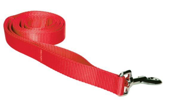 Leash, 1-in x 23-in Product image