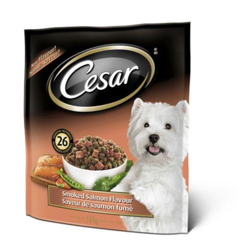 Cesar Dry Smoked Salmon Dog Food, 1.6-kg Product image