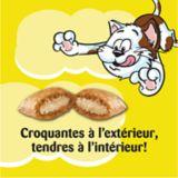 Temptations Tub Cat treats, 454-g | Temptationsnull