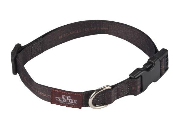 Cesar Millan Dog Collar Product image
