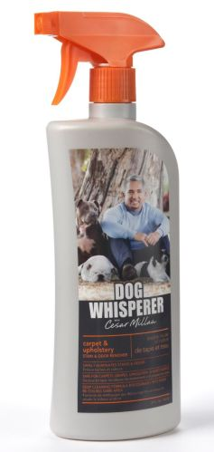 Cesar Millan Stain & Odour Remover Product image