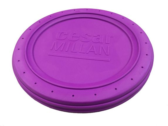 Cesar Millan Fetch & Catch Toy Product image