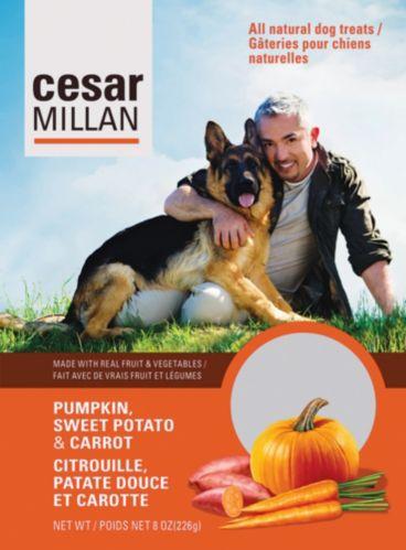 Cesar Millan Pumpkin, Sweet Potato and Carrot Dog Treats Product image