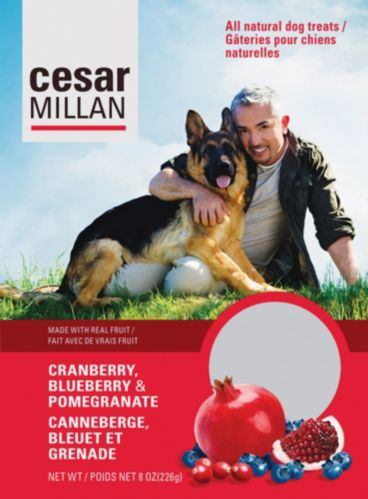 Cesar Millan Cranberry, Blueberry and Pomegranate Dog Treats Product image