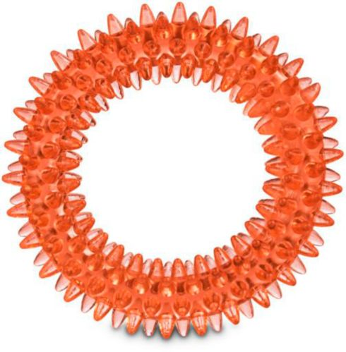 Petco Spiny Ring Dog Toy, Assorted Product image