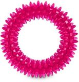 Petco Spiny Ring Dog Toy, Assorted | PETCOnull