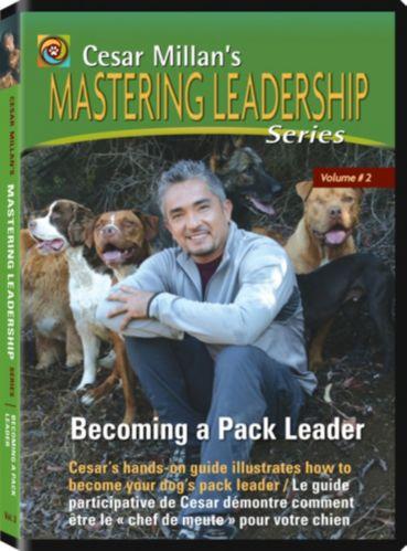 Cesar Millan Pack Leader DVD Product image