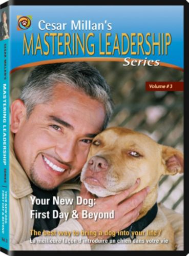 Cesar Millan Your New Dog DVD