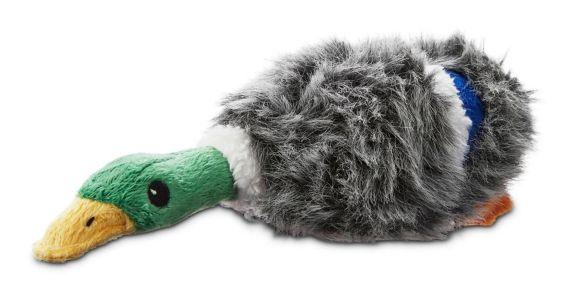 Petco Mallard Plush Dog Toy, Small Product image