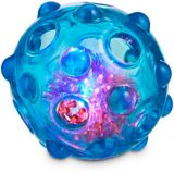 Petco Light Up Ball Dog Toy, Assorted | PETCOnull