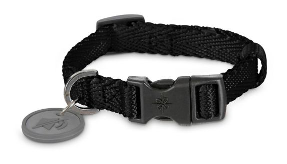 Petco Adjustable Nylon Dog Collar, Black, Small